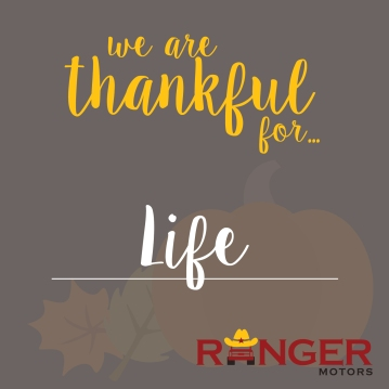 holidays - ranger - graphics_life